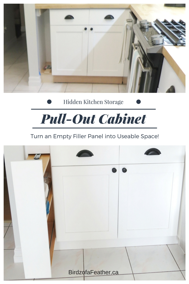 Hidden Kitchen Storage: Turn a Filler Panel into a Pull-Out Cabinet ...