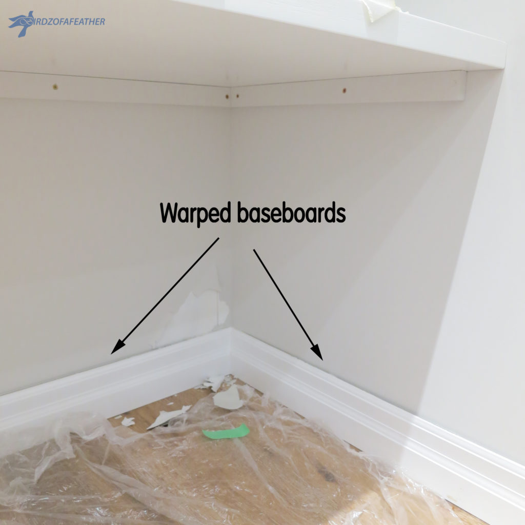 Damp Basement Finding Leaks And Water Sources: Mold Prevention After A Water Leak (Part 2)